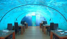 Underwater Restaurant in Maldives.  Beautiful underwater restaurant secured 5 metres below sea level at the Hilton Maldives Resort & Spa in Rangalifinolhu, Maldives. The restaurant has a capacity of 14 people and is encased in transparent acrylic roof offering 270° panoramic view to its customers.