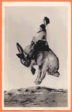 riding on a giant rabbit  by Conard