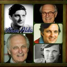 .Alan Alda Best Tv Shows, Best Shows Ever, Favorite Tv Shows, Movies And Tv Shows, Alan Alda Mash, John Mcintire, Military Shows, Mash 4077, Dad's Army