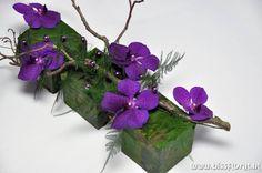 Met een #Vanda #Orchidee https://www.bissfloral.nl/blog/2015/02/12/met-een-vanda-orchidee/