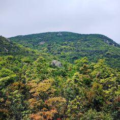 山上看风景