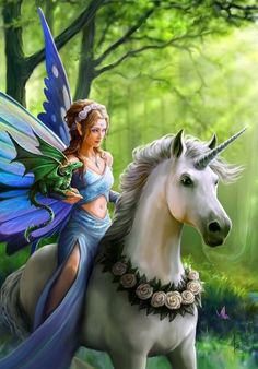 - Magickal Realms Greeting Card - Anne Stokes Unicorn Faery Dragon Fantasy Card. - Realms of Enchantment - Elf Maiden with Unicorn and Dragon Friends. - Features a full-color wraparound design with a