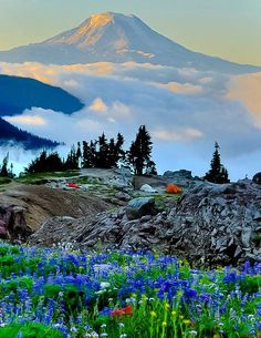 mountains in Washington state, USA