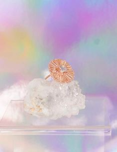 Double Fan Moonstone Ring - 14k Rose Gold | Annachich Jewelry