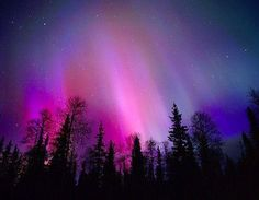 northern lites  On my bucket list!!