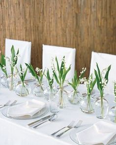 Minimal bud vases to run down head table. This is not an accurate photo of flowers, but of minimal, clean vibe.