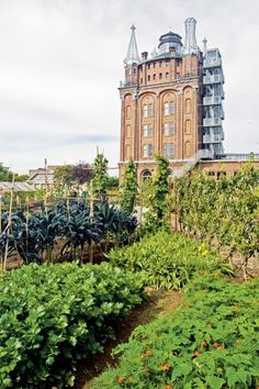 Vegetable garden at Villa Augustus, Dordrecht, The Netherlands