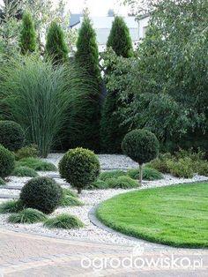 Garden Forum – Garden - All For Garden Modern Landscape Design, Landscape Plans, Modern Landscaping, Landscaping Plants, Front Yard Landscaping, Boxwood Garden, Evergreen Garden, Gravel Garden, Garden Paths