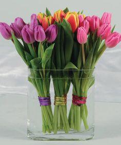 Tulip Twist