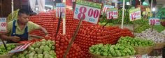 Mountains of tomatoes and limes
