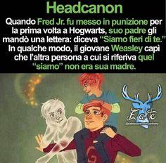 Headcanon Harry Potter, Harry Potter Quiz, Harry Potter Marauders, Harry Potter Tumblr, Harry Potter Anime, Harry Potter Characters, Harry Potter World, Harry Potter Hogwarts, Funny Messages