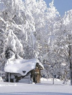 """Winter *❄️~*.Wishes & Dreams.*~❄️*  """"Turning houses into birthday cakes . . . """" ~Ogden Nash #Winter_Poetry"""