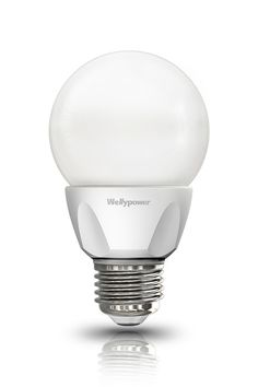wellypower full angle LED bulb [CERES]
