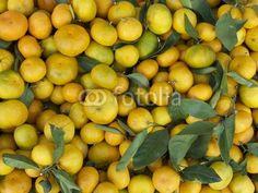 Reifende Mandarinen in einem Geschäft im türkischen Bodrum am Mittelmeer in der Provinz Mugla