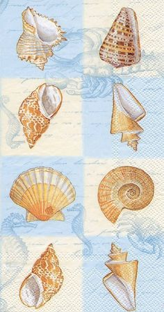 IHR Sounds of the Sea blue Seashells Marine Life Printed 3-Ply Paper Guest Towels Wholesale BF443440