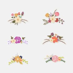 Flower illustrations collection Free Vector