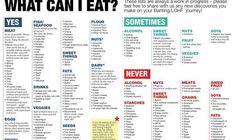 ZERO CARB FOODS FOR A SLIM YOU – Easy Recipes