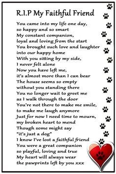 Pet Loss Quotes, Dog Quotes, Animal Quotes, Pet Loss Grief, Loss Of Dog, I Love Dogs, Puppy Love, Dog Heaven Quotes, Dog Poems