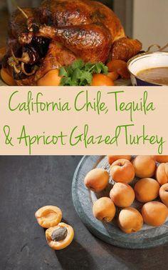 Marcela Valladolid's California Chile, Tequila & Apricot Glazed Turkey