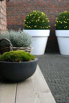 Inspiratie voor kerstversiering op balkon of in de tuin
