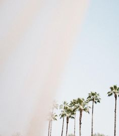 "2,104 mentions J'aime, 38 commentaires - Lisa-Marie Mewes | Tim Slotta (@jimsandkittys) sur Instagram: ""Cabana vibesss.🌝 | @selmanmarrakech #poolside #jandkhotels #selmanmarrakech #africa #sky"""