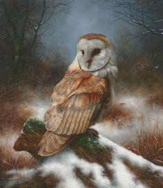 'Barn Owl' by Carl Whitfield