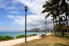 Kapiolani Park  and Waikiki beach in the background (Oahu, Hawaii). This is definitely a more peaceful part of the town, away from the crowds (but park is filled with homeless people and their mobile 'shopping cart' homes) because there are public amenities nearby.
