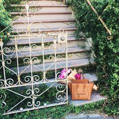 Visit the area around Alta Plaza Park in Pacific Heights in San Francisco - beautiful homes with beautiful flowering plants. At the top of the staircase in the park is a panoramic view of the city and the Bay.  The Mill is one of the best coffee shops in S