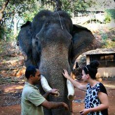 Bondla Wildlife Sanctuary Goa, India