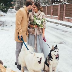 "WEDDING DIARY on Instagram: ""5 Simple Tips For Planning A Winter Wedding ⠀ ✨1. Invest in Winter Accessories It will be cold so accessories will be important to keep…"" Winter Wedding Inspiration, Winter Accessories, Cold, Simple, Tips, Animals, Instagram, Animales, Animaux"