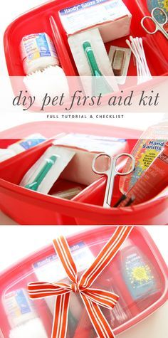 DIY Pet Stuff: Here's an example of a doggy first aid kit  or at home medical kit