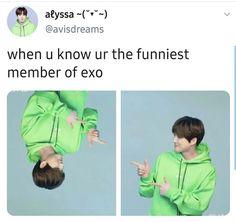 EXO memes Baekhyun, Chanbaek, Exo Memes Funny, Xiuchen, Vixx, Reaction Pictures, Super Junior, Funny Cute, Shinee