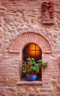 Love this window in Modena, Italy. Old Windows, Windows And Doors, Window Dressings, Window View, Through The Window, Old Doors, Window Boxes, Door Knockers, Beautiful Architecture
