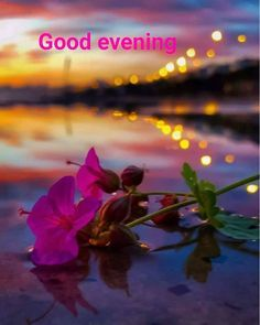 Top 10 Good Evening Greetings, Pictures for Whatsapp-bestwishespicsday Good Evening Love, Good Evening Photos, Good Evening Wishes, Good Evening Greetings, Evening Pictures, Good Night Prayer, Good Night Blessings, Good Night Quotes, Love Images