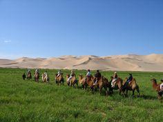 Randonnée sur chameaux en famille, Mongolie