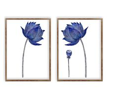 Watercolor Lotus, Lotus Flower Art, Blue And White Art, Set Of 2 Prints, Living Room Decor, Canvas Print, Minimalist Art, Floral Wall Art https://www.etsy.com/listing/588984866/4-pieces-paintings-blue-navy-poppies?ref=shop_home_active_2 • FREE SHIPPING WORLDWIDE • Any Art print can be perso