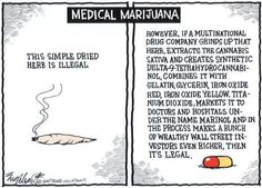 The truth about #mmj