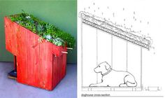 red paint and flowers for dog house decoration
