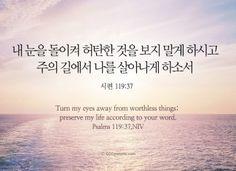 Daily Bible, Faith, Christian, Words, Loyalty, Christians, Horse, Believe, Religion