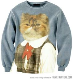 I think I found the perfect sweater.