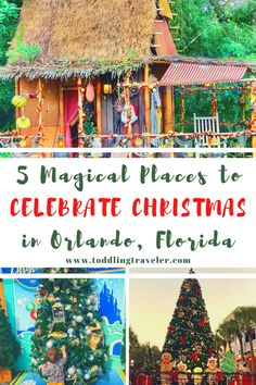 Whether you're going to Disney at Christmas or looking for things to do in Orlando at Christmas, these 5 unique things to do in Orlando for the holidays are a great place to start. They include: Magic Kingdom at Christmas, Icon Park Orlando Ferris Wheel and Sea Life Aquarium, Disney Springs Christmas Tree Trail, Celebration, FL snow, Christmas lights in Orlando and more. Very Merry Christmas Party, Christmas Events, Christmas Travel, Holiday Travel, Christmas Lights, Christmas Vacation, Florida Travel, Usa Travel, Canada Travel
