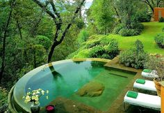 Outdoor Jungle Pool