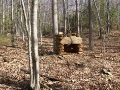 Remnant. Virginia Mountains, Wood, Woodwind Instrument, Trees, Home Decor Trees, Woods
