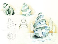 The concept for this house started from studying the shape of a sea shell. The drawing is on format , done using colored pencils Sea Shell House Biomimicry Architecture, Conceptual Architecture, Architecture Sketchbook, Organic Architecture, Architecture Geometric, Pavilion Architecture, Concept Board Architecture, Shell House, Industrial Design Sketch