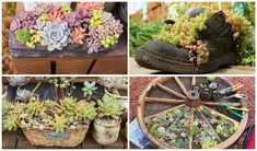 Succulent planter ideas indoor unique planting pot plant container succulents gardening wall d . succulent planting ideas with tutorials garden Succulent Planter Diy, Succulent Gardening, Flower Planters, Diy Planters, Garden Planters, Planting Succulents, Planter Ideas, Diy Garden Bed, Artificial Succulents