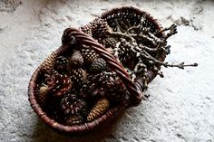 a basket with winter treasures