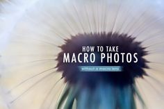 How to take macro photos without using a macro lens