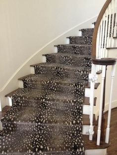 Designer Favoriteu0027s | Stair RunnersA Little Animal Print Goes A Long Way!  This Is One