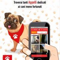 #dogalize Tutorial Dogalize: Adozioni #dogs #cats #pets
