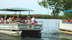 Showing item 1 of 4. Boat starting off on the black river safari in Jamaica